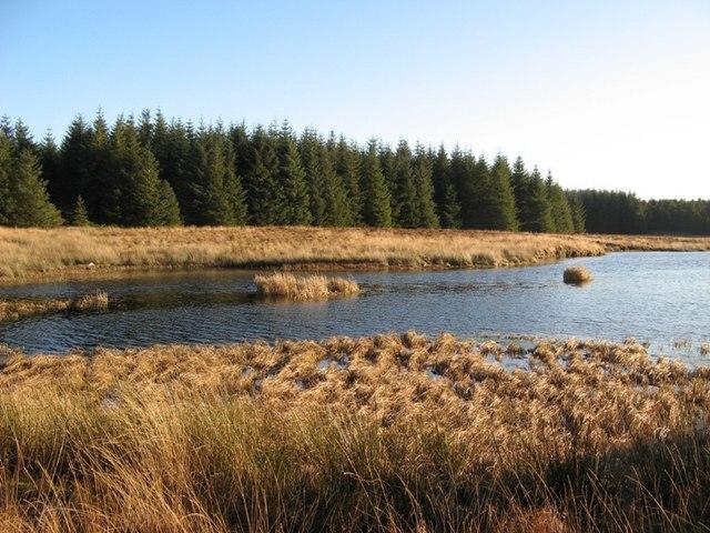 Moorland, Loch & Forest