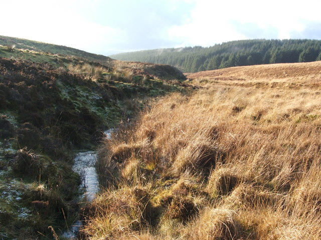 A tributary stream and its valley