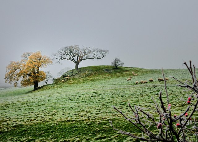 A Frosty Day From Stalloe Cottages