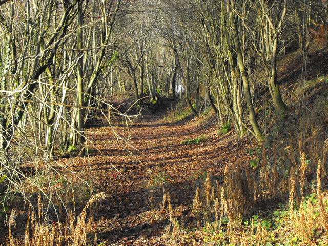 Bridleway nears the quarry works