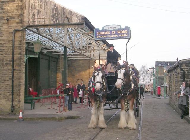 Working Horses - Bradford Industrial Museum - Moorside Road, Fagley