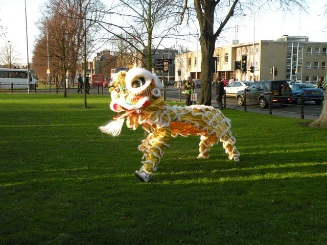 Lion Dancing Ireland Lion Dance Donkey's Common