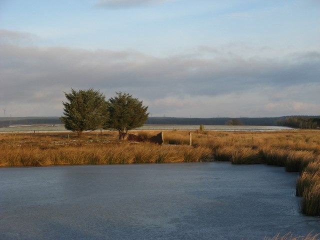 Parkfield Loch, frozen, and with trig point in the background.