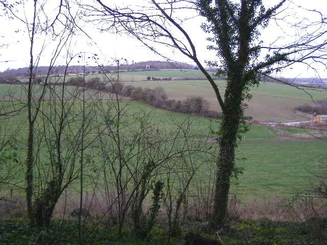 View  from Slindon of The Folly on Nore Hill