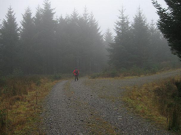 Misty Junction