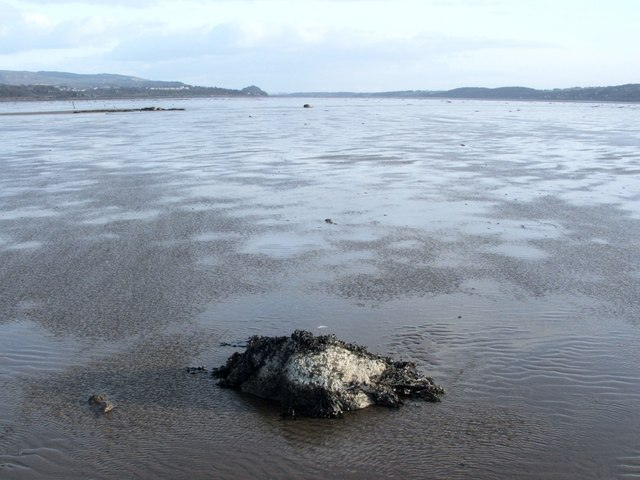 Shore near Ardoch - view east