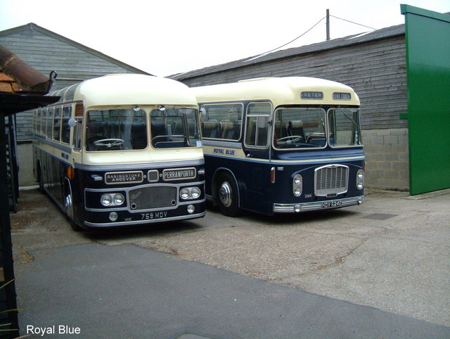 Royal Blue Coaches