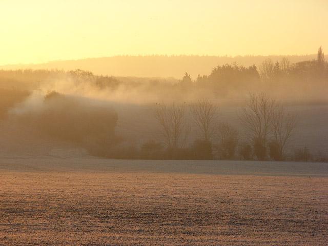 Farmland, Benson