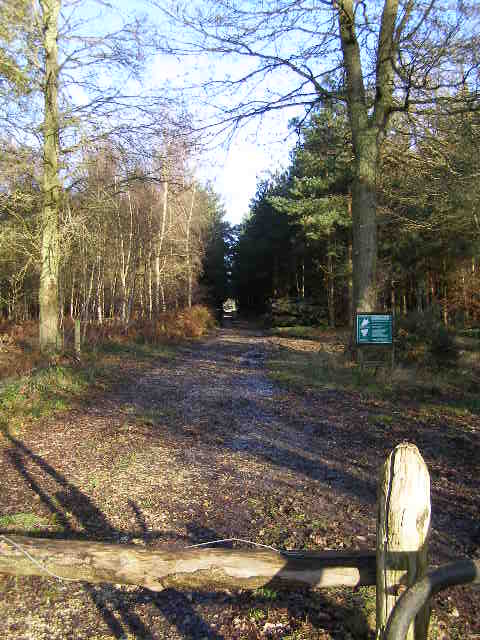 Benyons Enclosure, Ufton Woods