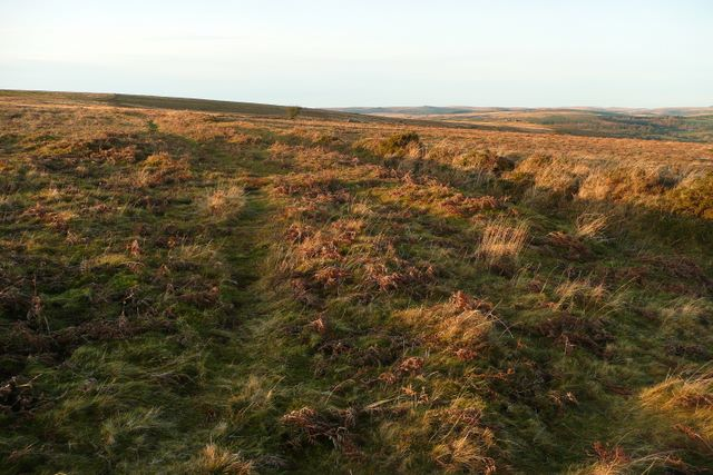 Boundary on Holne Moor