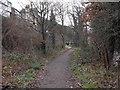 SO1192 : Riverside walk by Penny Mayes