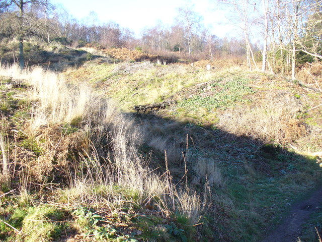 Ramparts at Holmbury Hill Hillfort