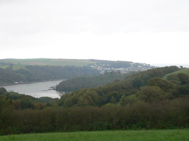 View of the confluence of Old Mill Creek with the Dart Estuary