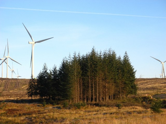 Wind turbines growing in forestry clear fell