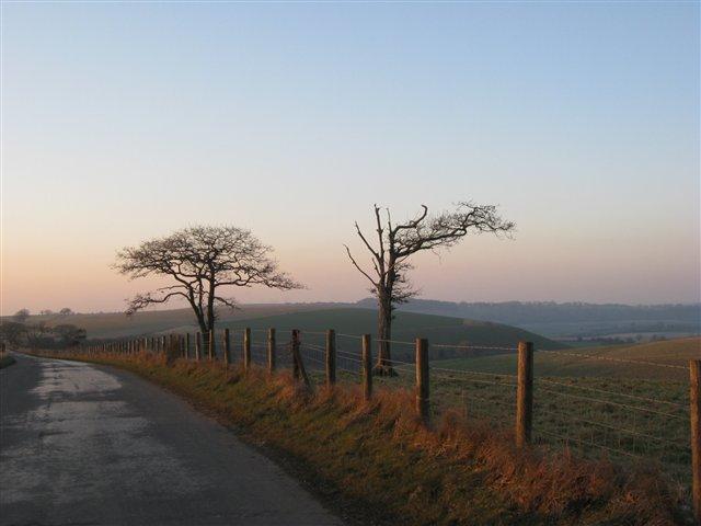 Lane near Chidden Down