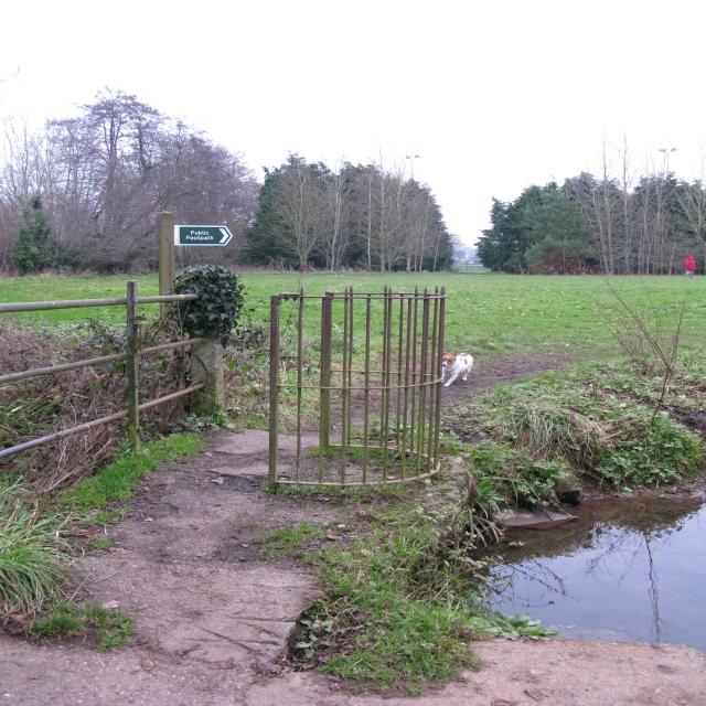 Cullompton Mill Leat Walk