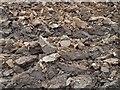 SE4105 : Edderthorpe earth by Steve  Fareham