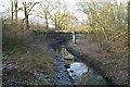 SJ6096 : Millingford Brook by David Long