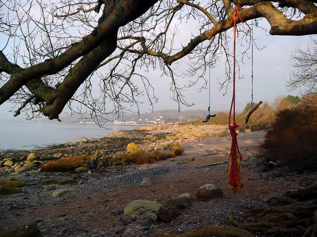 Rope swings near Rockcliffe