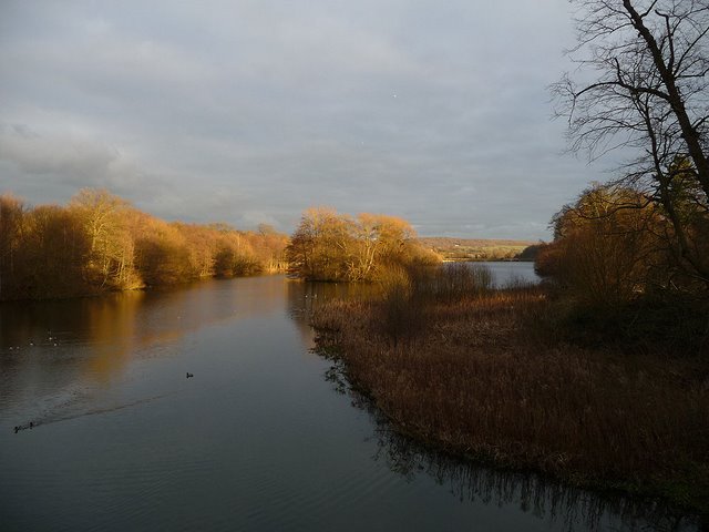 View east along Bretton Country Park lower lake