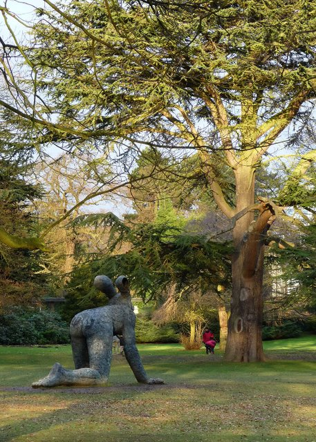 Sophie Ryder sculpture and cedar tree