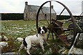 NJ0549 : Abandoned hayrake by Sleughwhite steading : Week 1
