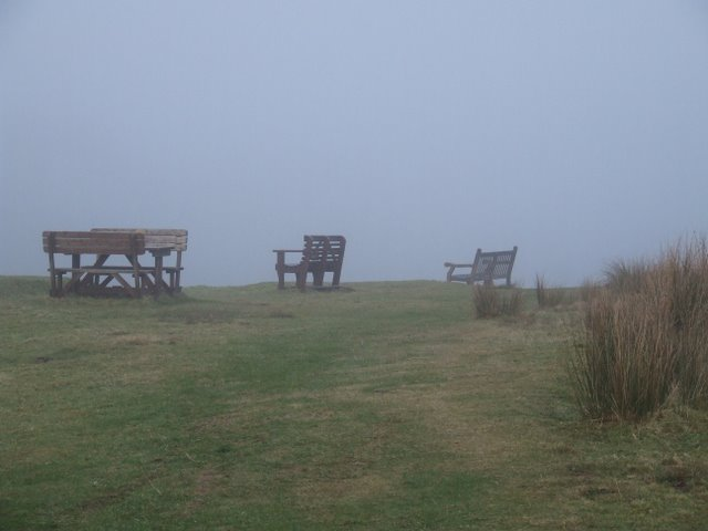 Benches at Kelly Cut