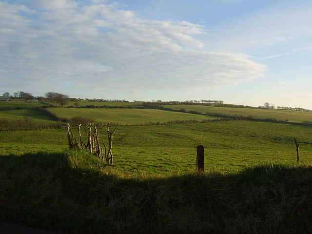 Farmland near Knockagh