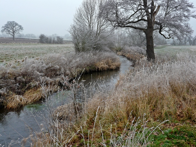 River Blythe near Barston