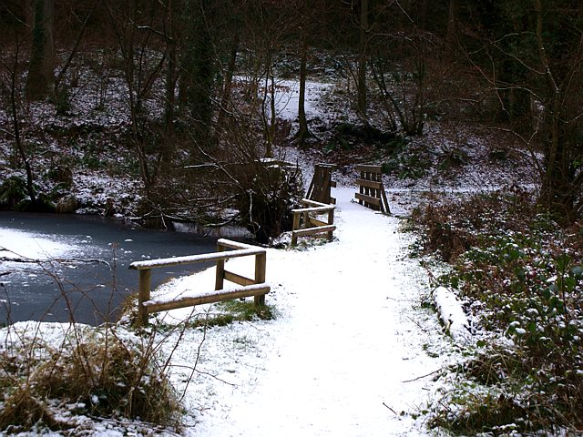 Footbridge at Upper Soudley Pond, Soudley