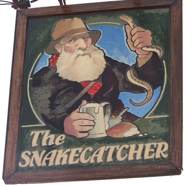 Snake Catcher Brockenhurst Dog Friendly