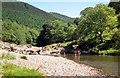 SN7278 : A summer afternoon in the Rheidol Valley by John Lucas