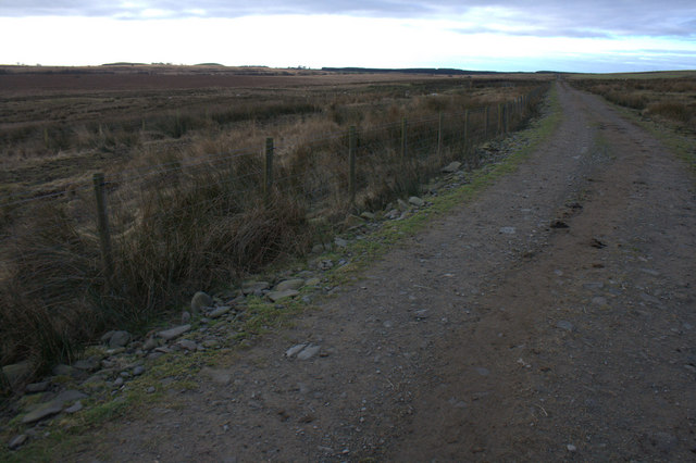Road from the Kerr to Old Irvine
