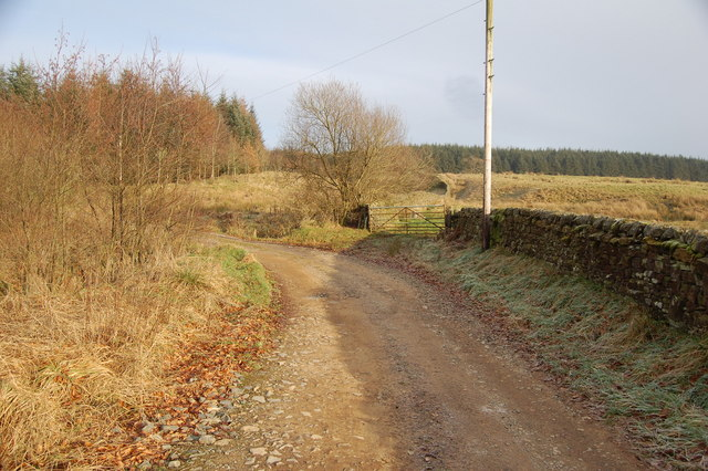 Track to Upper Millsteads