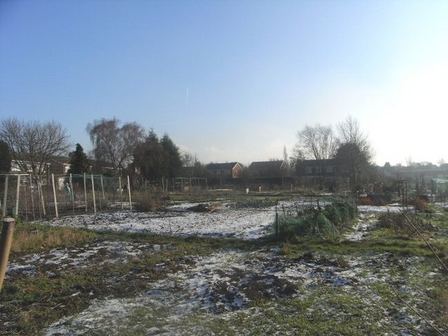 Eastwick Allotments