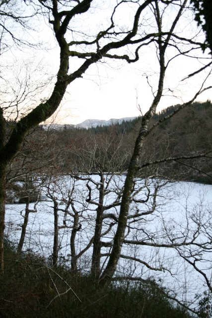Hafod y Llyn - frozen over!