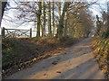 SU8085 : Footpath off Bockmer Lane by Shaun Ferguson