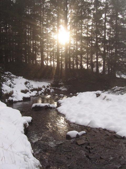 Sunlight on the White Lyne