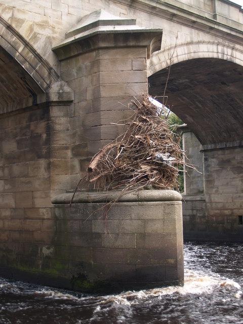 Floods, September 2008
