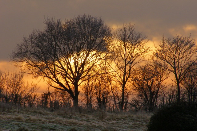A frosty sunset, Eling