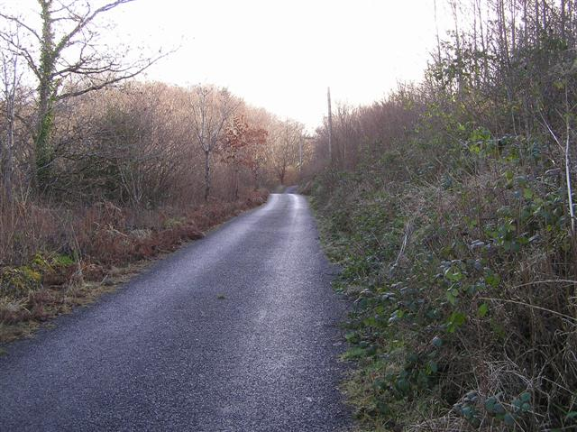 Road at Corracloona