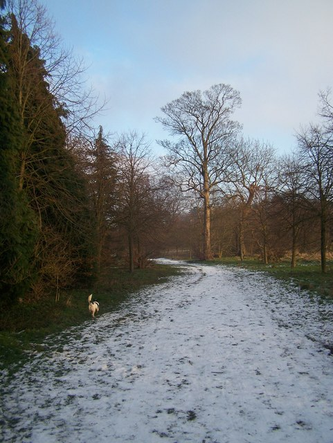 Winter in Camer Country Park