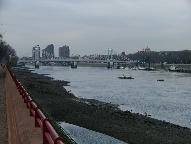 Albert Bridge from Battersea Park