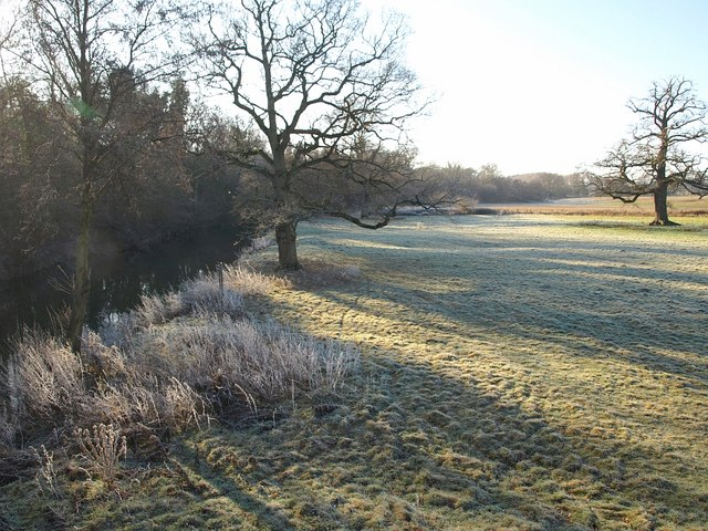 Meadow by the Teme