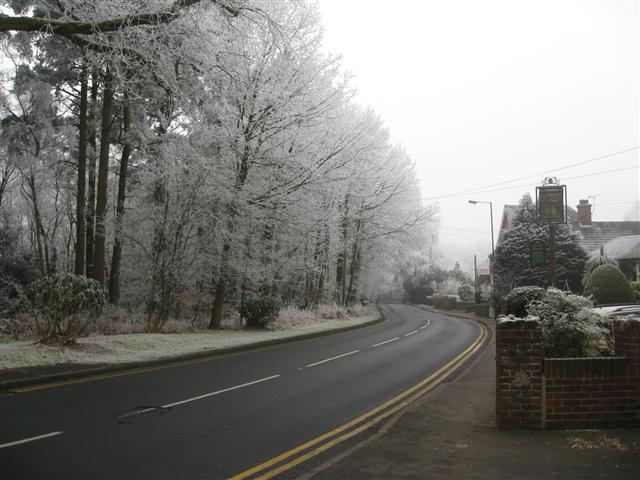 Churt Road, Beacon Hill