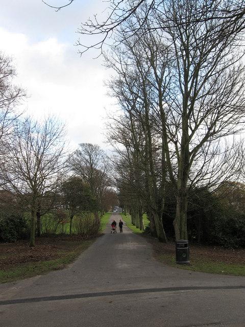 The Droveway