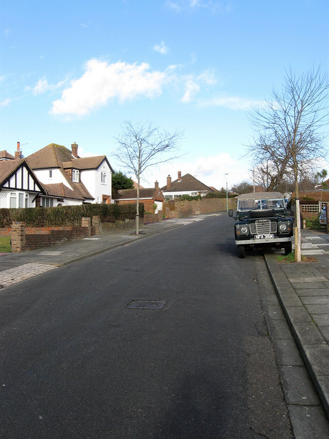 Shirley Avenue