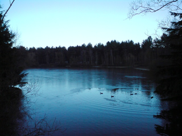 Artificial Lake At Centerparcs, Elveden Forest:: OS grid TL8080 ...