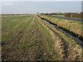 TL4877 : Stubble field, Grunty fen by Hugh Venables