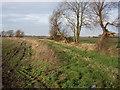 TL4777 : Footpath along Grunty Fen Catchwater Drain by Hugh Venables